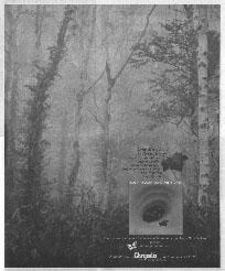 Robin Trower - Long Misty Days